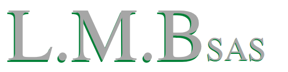Logo LMB SAS - Location Vente matériels BTP à La Réunion